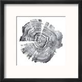 Tree Ring Abstract IV Reproduction encadrée par Ethan Harper
