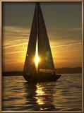 A Sailboat Heads Back to its Mooring Reproduction encadrée