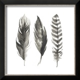 Watercolor Feathers I Reproduction encadrée par Grace Popp