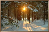 Paysage hivernal Reproduction encadrée par Yanika