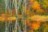 Autumn and the Vermilion River Capreol Ontario Canada