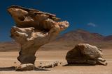 Arbol De Piedra  Southern Altiplano  Bolivia