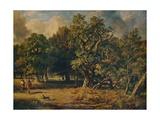 Windsor Forest  c1835