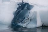 Detail of an Iceberg  Skontorp Cove  Paradise Bay  Antarctica