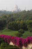 The Taj Majal Looms Behind Manicured Lawns and Gardens of the Oberoi Amarvilas Resort