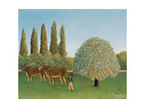 Meadow (pasture) 1910
