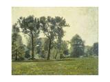 Pappeln bei Goethes Gartenhaus im Schlosspark von Weimar Um 1885