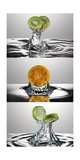 FreshSplash Citrus Triptych