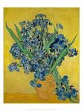 Irises  1888