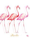 Fashion Flamingos I