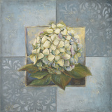 Hydrangeas on Blue I