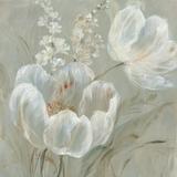 Fine Tulip II