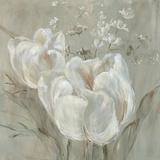 Fine Tulip I