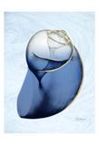 Marble Indigo Snail 2