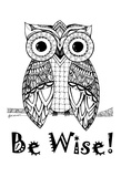 Be Wise Owl
