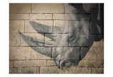 Stone Wall Rhino