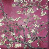 Almond Blossom  1890 (Pink Color Variation)