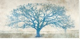 Blue Tree (*exclusive*)