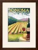 Sonoma County  California Wine Country