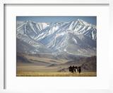 Four Eagle Hunters in Tolbo Sum  Golden Eagle Festival  Mongolia