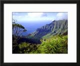 View Above the Na Pali Coast  Kauai  Hawaii  USA