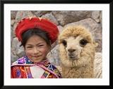 Girl in Native Dress with Baby Alpaca  Sacsayhuaman Inca Ruins  Cusco  Peru