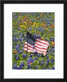 American Flag in Field of Blue Bonnets  Paintbrush  Texas Hill Country  USA