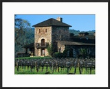 V Sattui Winery and Vineyard in St Helena  Napa Valley Wine Country  California  USA