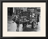 Small Boy Waits Patiently on a Donkey Cart in the Market Place at Kildare Co Kildare Ireland