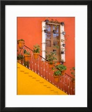 Colorful Stairs and House with Potted Plants  Guanajuato  Mexico