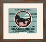 Cape Cod  Massachusetts - Pointer Brand Cranberry Label