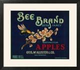 Bee Apple Crate Label - San Francisco  CA