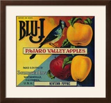 Blu-J Apple Crate Label - Watsonville  CA
