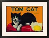 Tom Cat Lemon Label - Orosi  CA