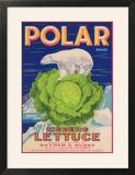 Polar Lettuce Label - Salinas  CA