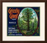Grizzly Giant Orange Label - San Dimas  CA