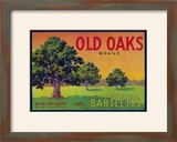 Old Oaks Pear Crate Label - Bryte  CA