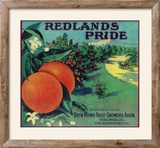 Redlands Pride Orange Label - Redlands  CA