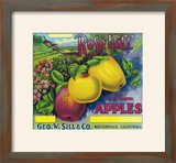 Rose Hill Brand Apple Label  Watsonville  California