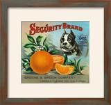 Lindsay  California  Security Brand Citrus Label
