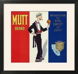 Porterville  California  Mutt Brand Citrus Label