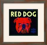 Villa Park  California  Red Dog Brand Citrus Label