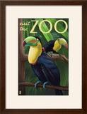 Visit the Zoo  Tucan Scene