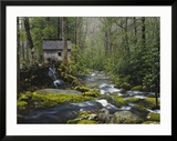 Watermill in Forest by Stream  Roaring Fork  Great Smoky Mountains National Park  Tennessee  USA