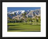 Desert Princess Golf Course and Mountains  Palm Springs  California  USA