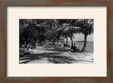 Miami  Florida - Bayfront Park Promanade Scene