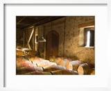 Window Light Streams Into Barrel Room at Hess Collection Winery  Napa Valley  California  USA