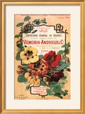 Vilmorin-Andrieux Seed Catalog