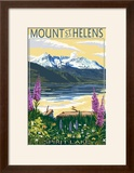 Mount St Helens  Washington - Spirit Lake