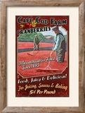 Cape Cod  Massachusetts - Cranberry